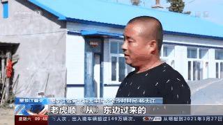 """「虎啸山林作品」虎啸山林,它们又来小兴安岭""""串门""""了!"""