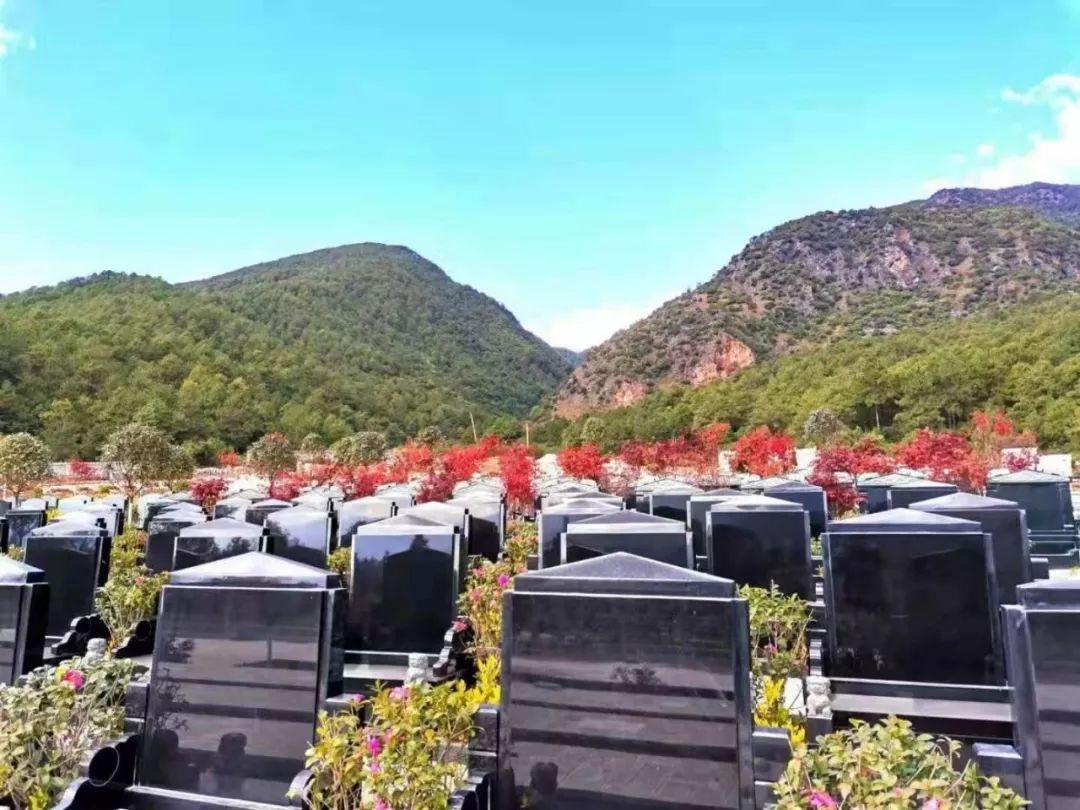 「美国火化还是土葬」11月起古城区火化区亡故者严禁土葬,一律火化!部分丧主可领补贴……