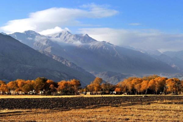 当南疆遇上北疆,谁的颜值更高?