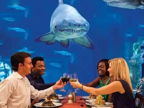 """世界上最""""不正经""""的五家餐厅,你想去吗?"""