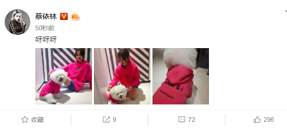 蔡依林晒与狗狗合照,她与狗狗穿的亲子装吗39岁她颜值似少女