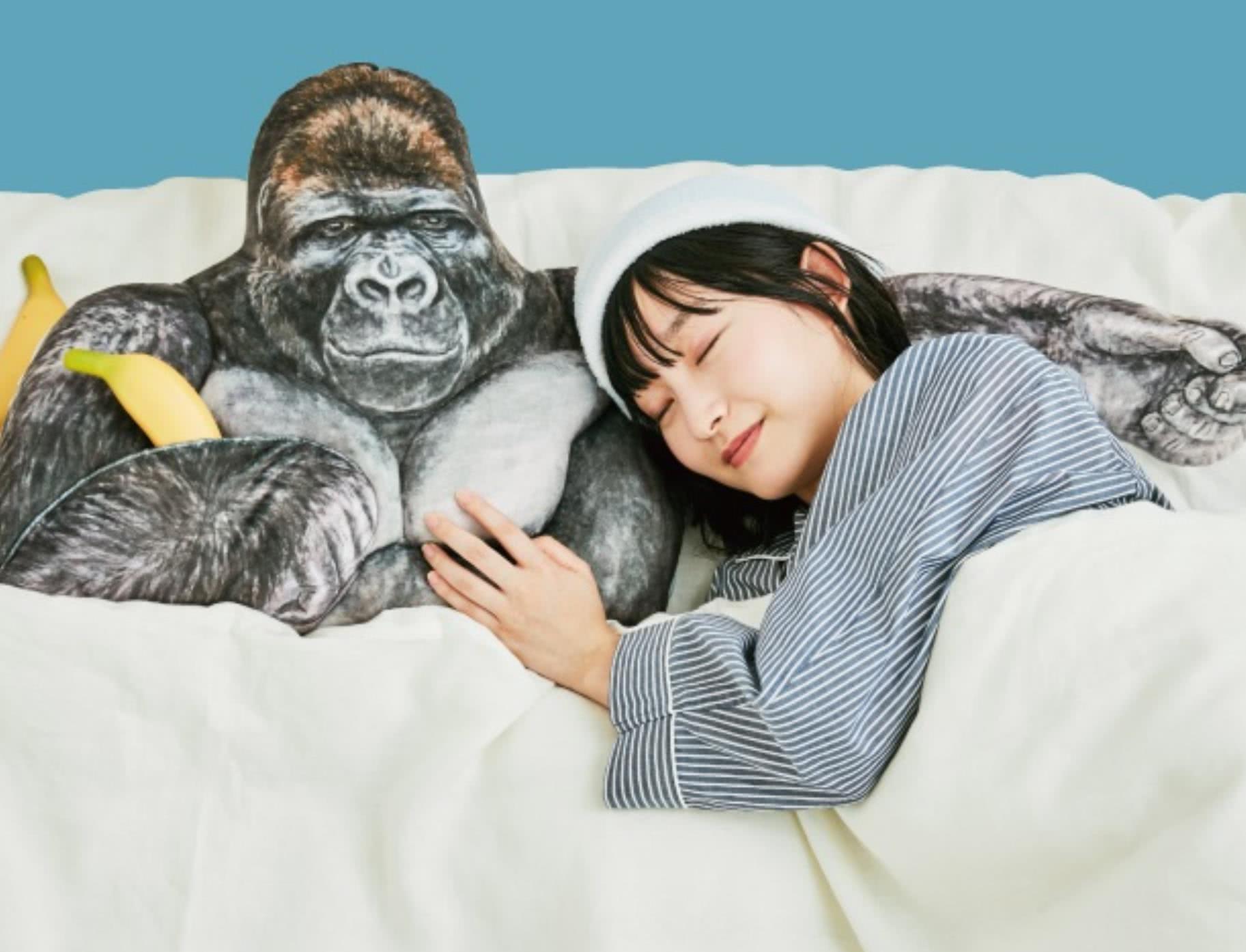 日本动物园面向女游客卖猩猩抱枕,有厚实胸肌,满足男友力想象
