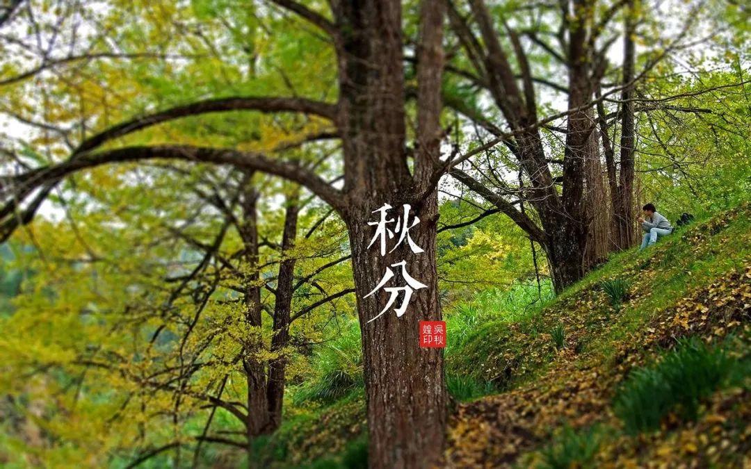 【二十四节气】之秋分篇,秋分昼夜平,春生、夏长、秋养、冬藏,秋季宜养生