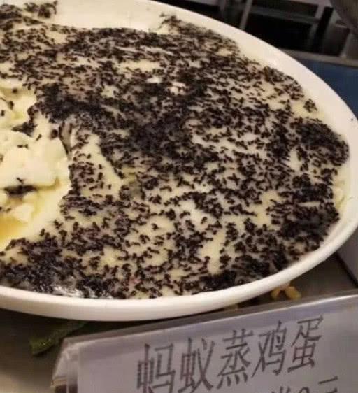食堂黑暗料理中的佼佼者,青椒月饼算什么,只有想不到没有吃不到