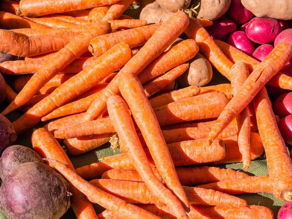 是流言还是真相:视力下降,靠吃胡萝卜可以提高视力?