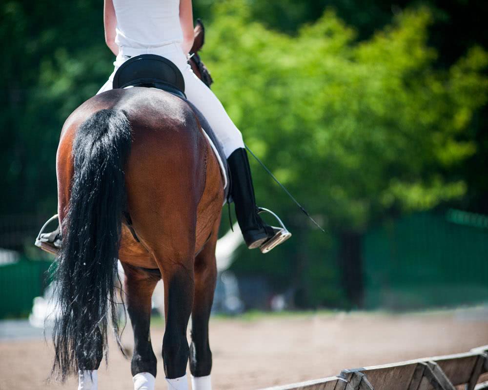<b>骑马女子从门前经过,却给词人留下无尽想象,一首词字字风流</b>