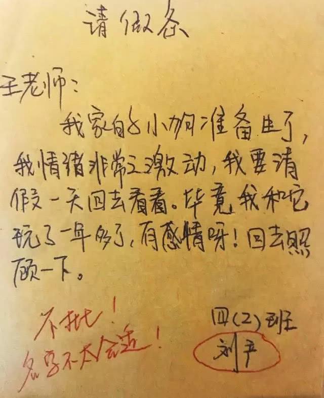 小学生写的请假条火了,老师评语是亮点,网友:笑的肚子痛