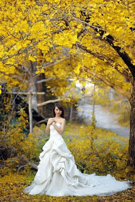 又到了秋天,又到了相思的季节,一首五代词情意悠悠