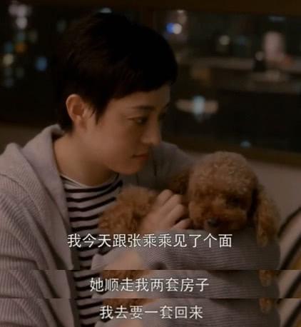 徐文昌是房似锦的初恋,两人牵手官宣恋情,公主抱的戏份太亲密