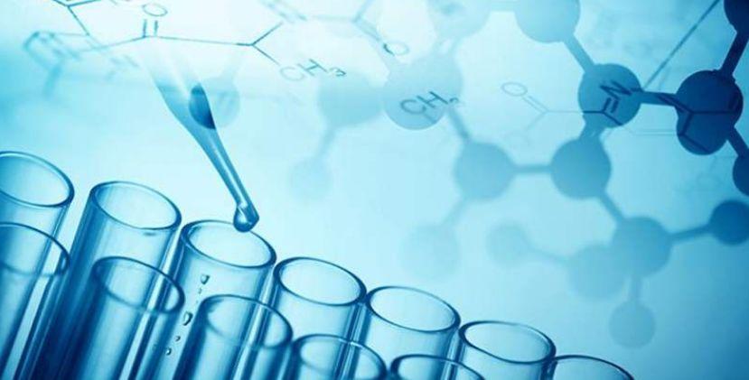 揭秘干细胞是如何进行组织修复与再生的!