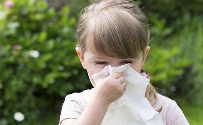 宝宝患有过敏性鼻炎,给他吃点什么调理呢?