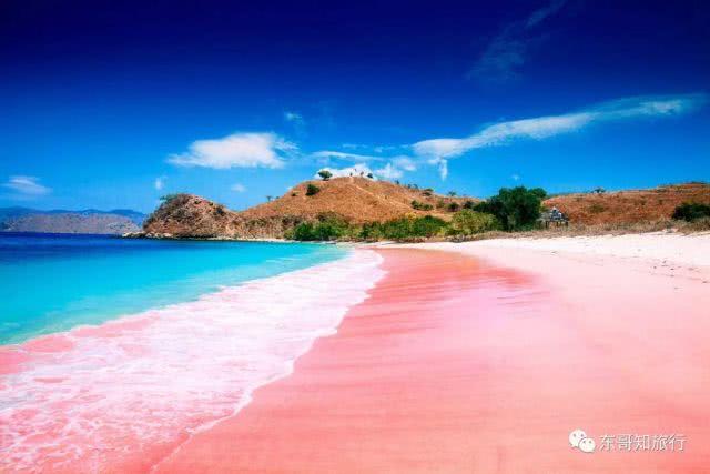 <b>世界上有那么多的粉红色,你见过粉红色的海滩吗?</b>