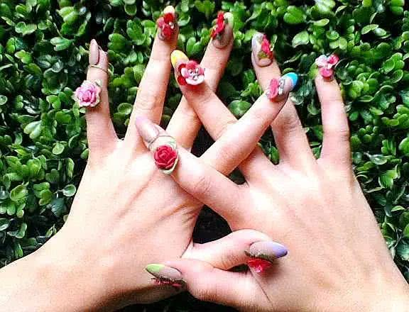 韦菊梅:指甲草,那一抹妖娆的指尖丹蔻