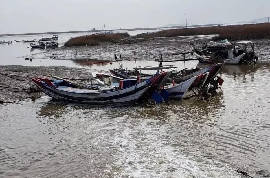 莆田三江口镇:入港口捕鳗苗是一道亮丽的风景线-看点快报