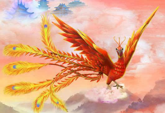 """""""朱雀""""在云南现身,羽毛鲜红耀眼,会是一种未知生物吗"""