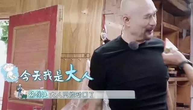 一个人撑起整档综艺!行走的榨汁机,徐锦江这个名场面能笑一星期