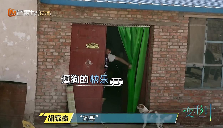 <b>《变形记》胡嘉豪夸赞高妈妈番茄炒蛋,看到他家的饭菜,差别真大</b>