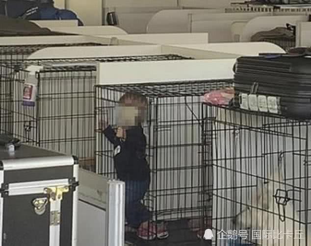 父母把孩子关进狗笼供人参观,当地警方:大家没必要大惊小怪!