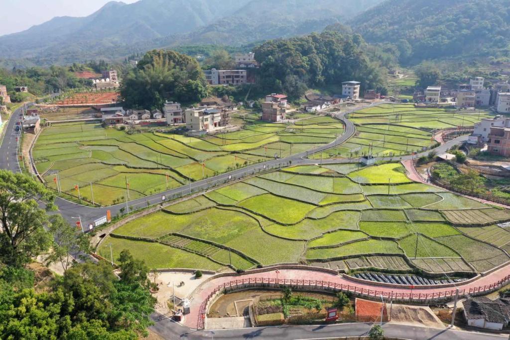 「让乡村振兴更加」广东丰顺:盘活乡村资源让家园更富美