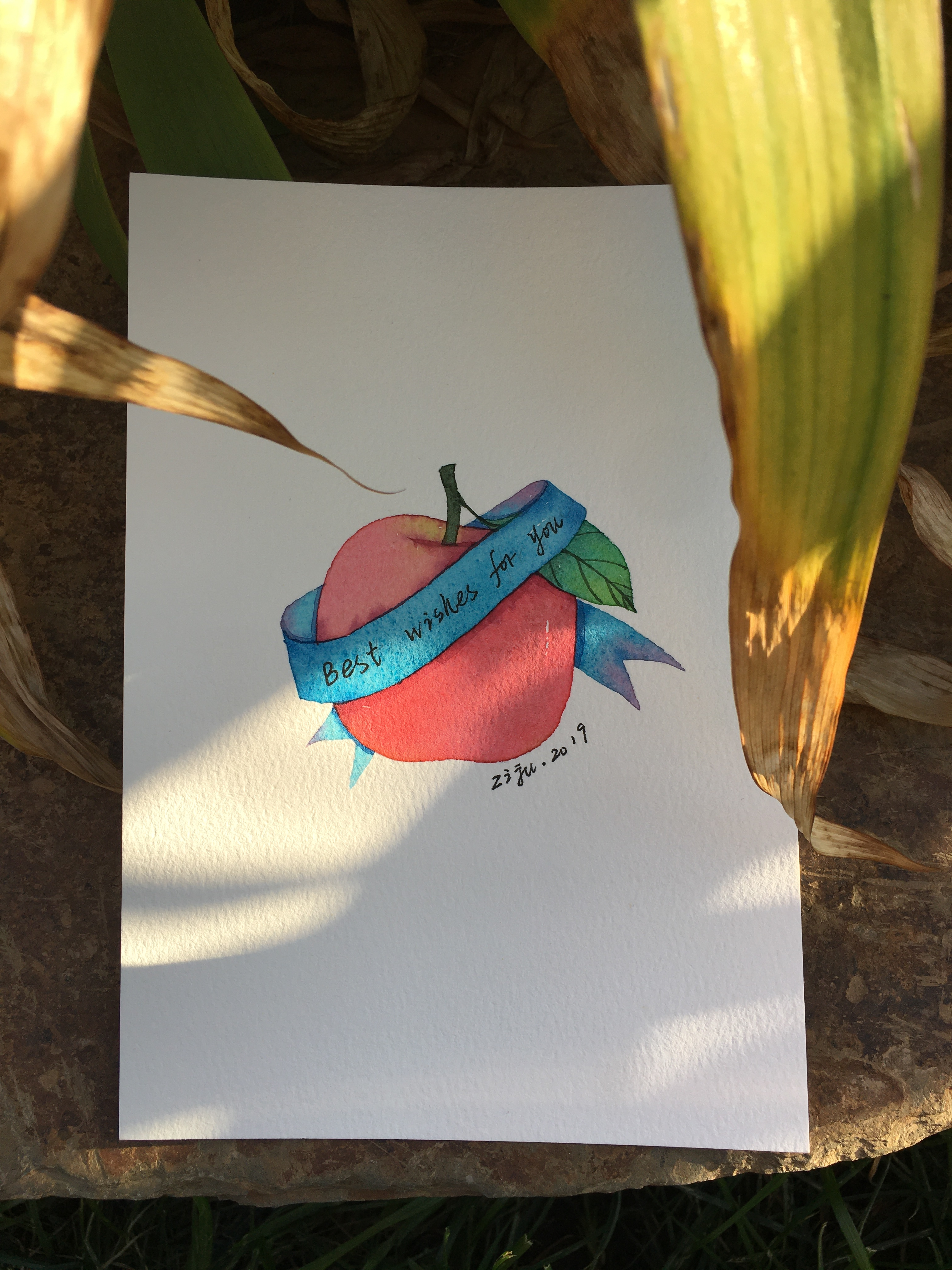 <b>从小白到绘画达人的蜕变,坚持21天就能画出漂亮的水彩小植物</b>