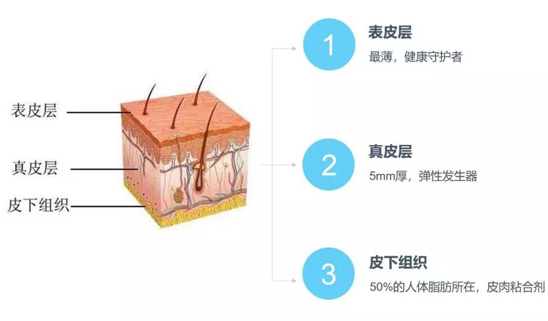 限定干货,怎样才能做好最简单的基础护肤