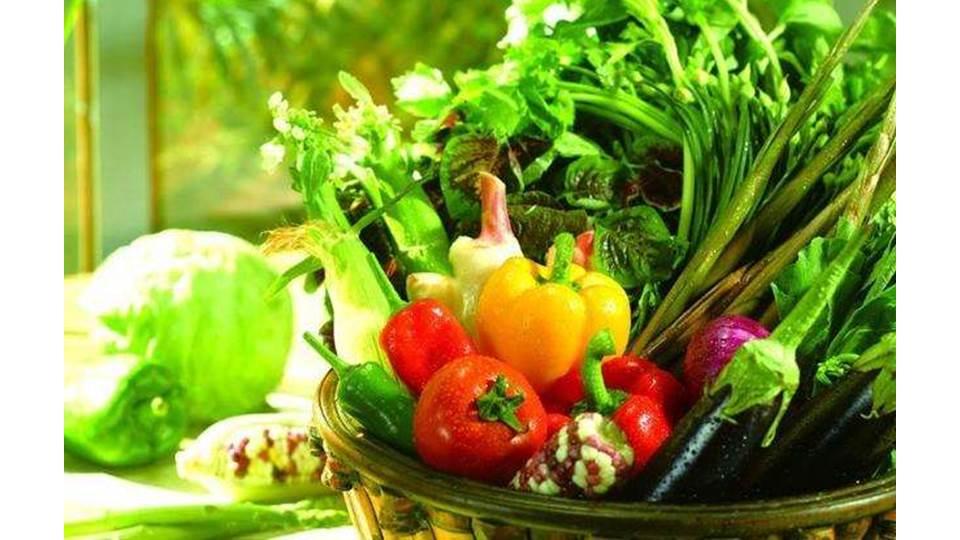 <b>吃素养生新时代,这几个素食菜谱你真的不需要吗</b>