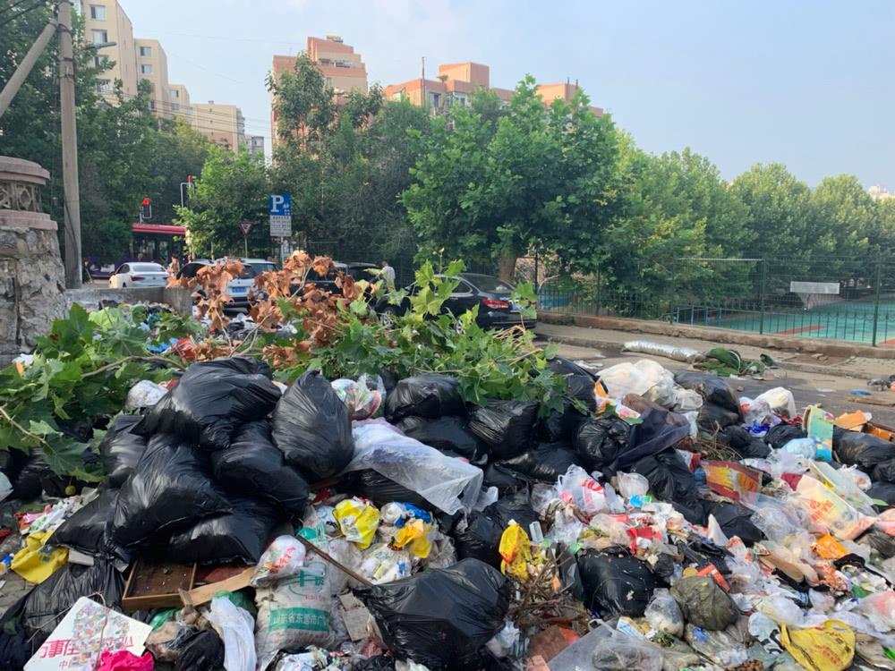 """大连马栏广场附近垃圾""""包围""""小区!街道:垃圾中转站积压严重"""