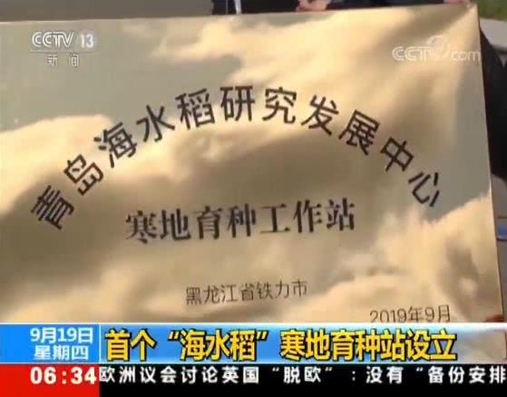 """袁隆平团队又出手!首个""""海水稻""""寒地育种站设立"""