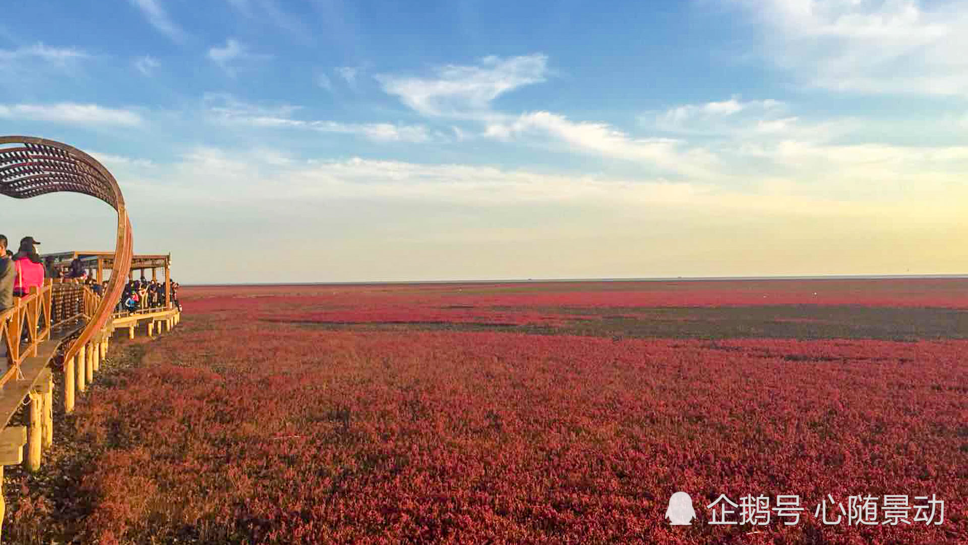 """九月梦幻""""红海滩"""",美景堪称一绝,原来辽宁不止有一处!"""