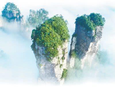 第一个国家森林公园张家界从种山林到种风景