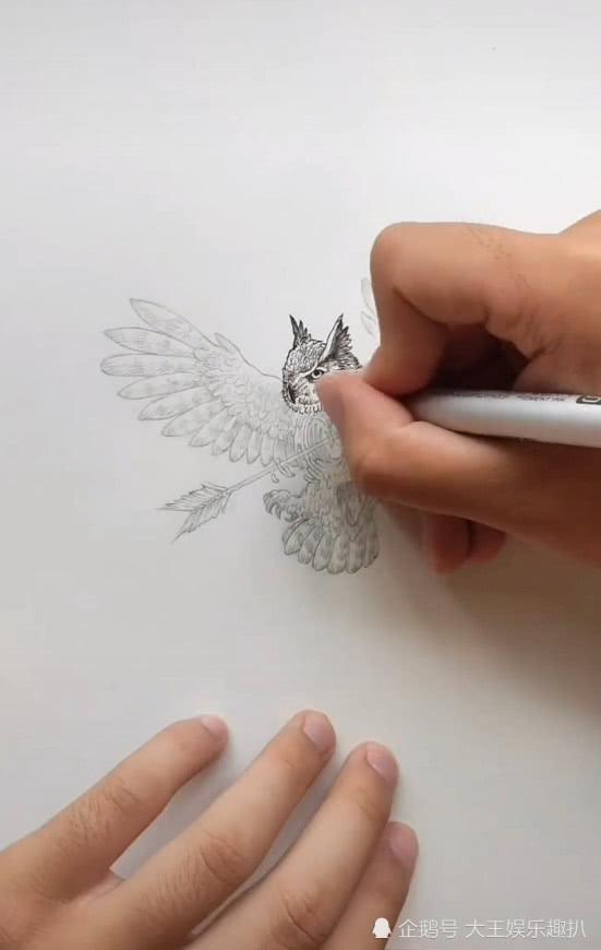 美术生画射雕英雄,网友以为是郭靖,成品却是受伤的小鸟