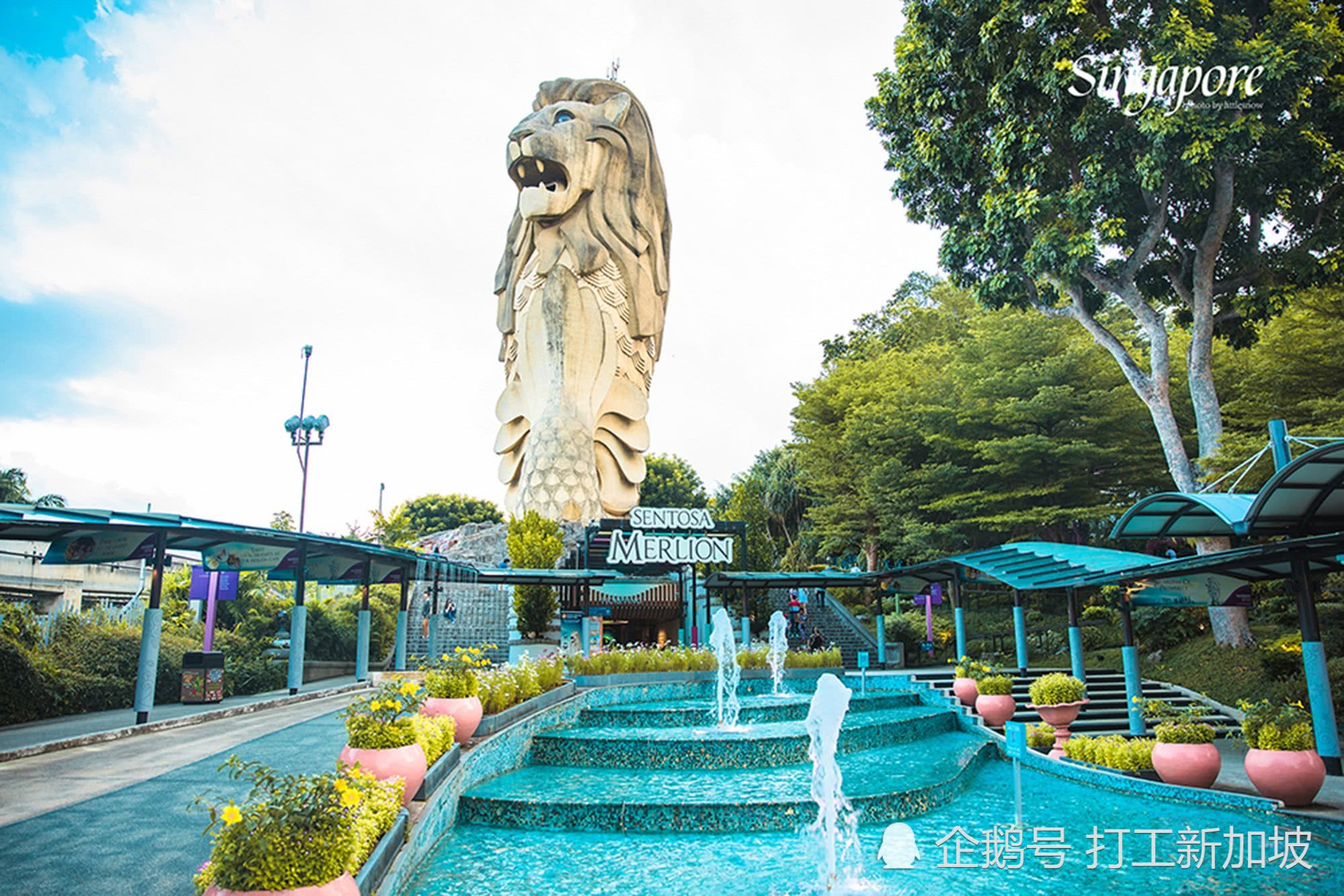 救救鱼尾狮吧!新加坡导游发起请愿书希望总理能够留住鱼尾狮