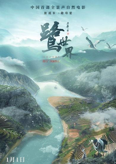 中国首部全景声自然电影《鹭世界》杭州路演,苍鹭携群鸟首现黄河生存图鉴