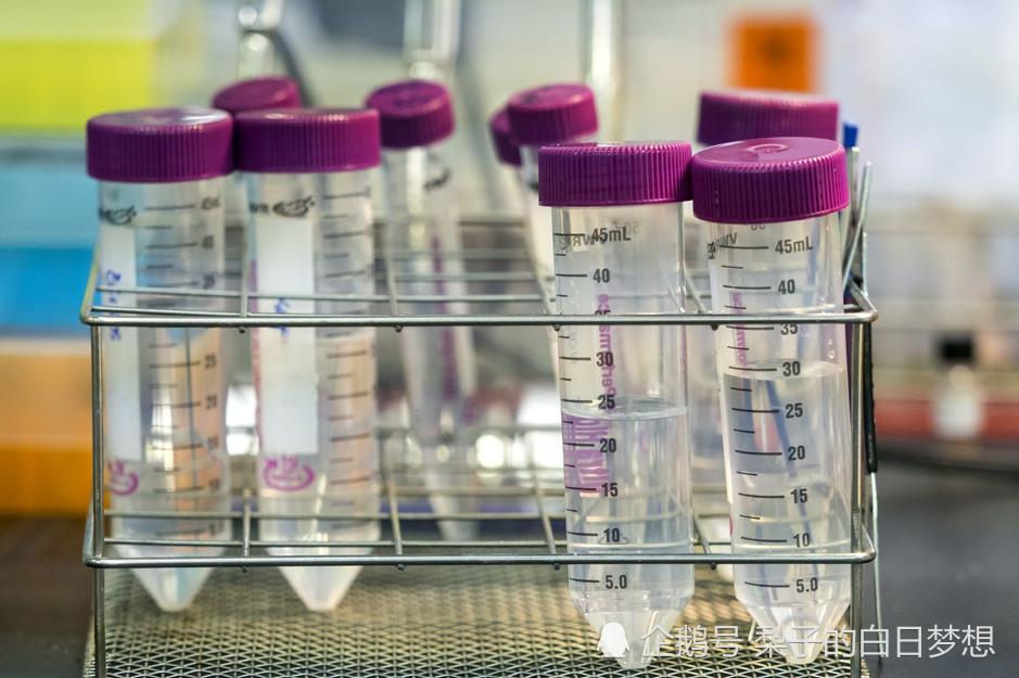俄罗斯一家存有天花和埃博拉病毒的实验室发生了爆炸