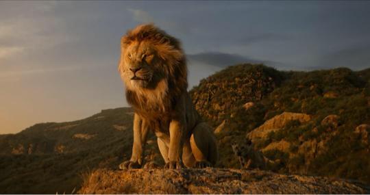 《狮子王》现实生活中能否拥有哈库呐玛塔塔精神?