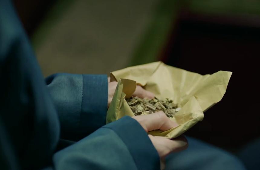 鹤唳华亭:姜尚宫给陆文昔的那包东西,在战马案中到底有什么用处