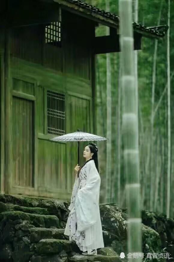 龙聪岩原创诗歌 花开竹畔见月明