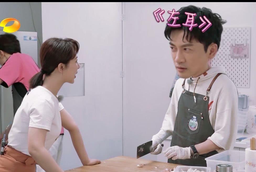杨紫曾面试《左耳》却被苏有朋淘汰,揭示娱乐圈背后的规则