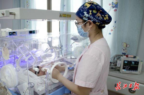 湖北省婦幼保健院新生兒科護士在護理住院患兒 通訊員溫紅蕾 攝圖片