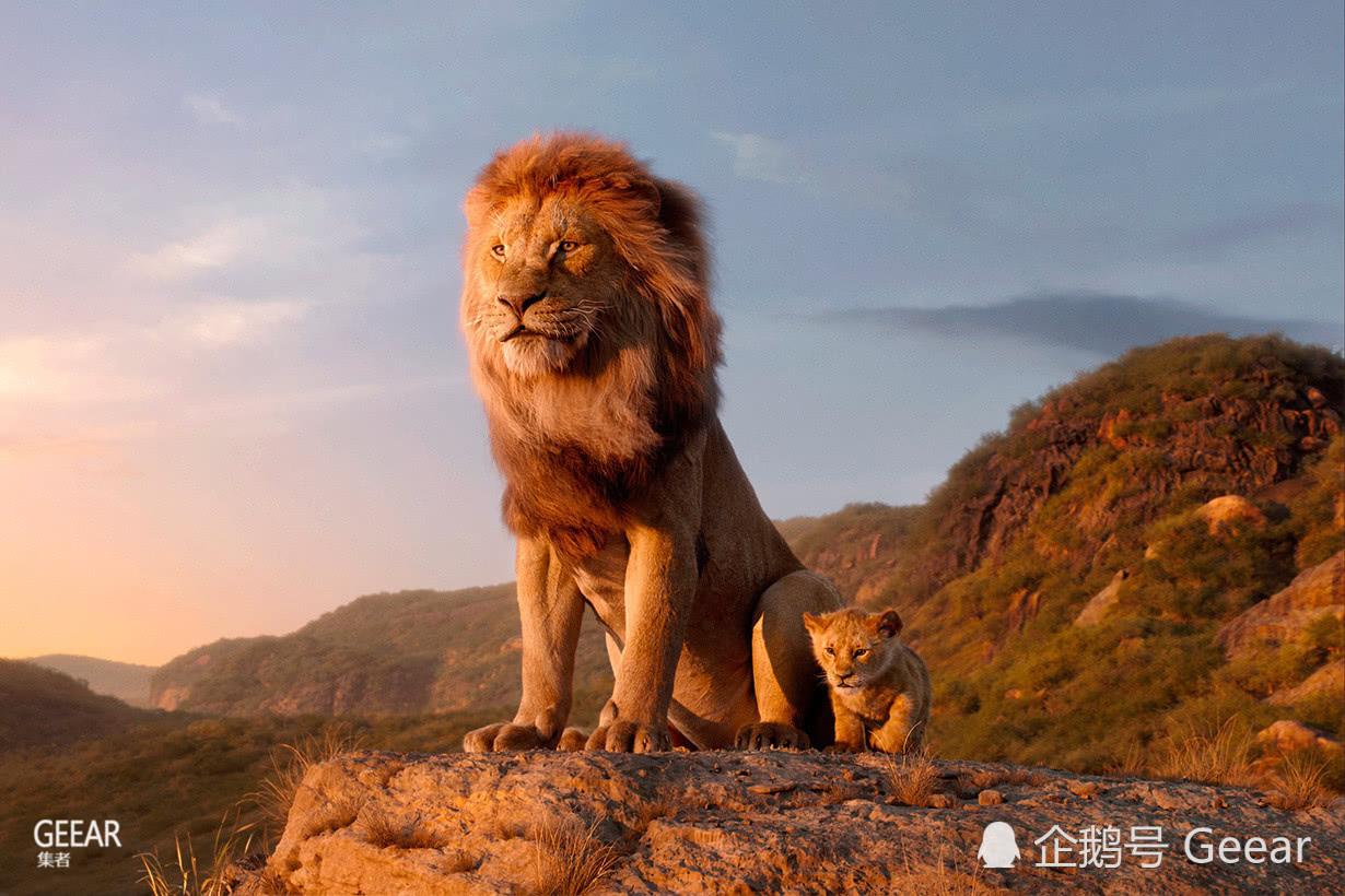 导演透露《狮子王》只有这一幕不是电脑合成,你看得出来吗?