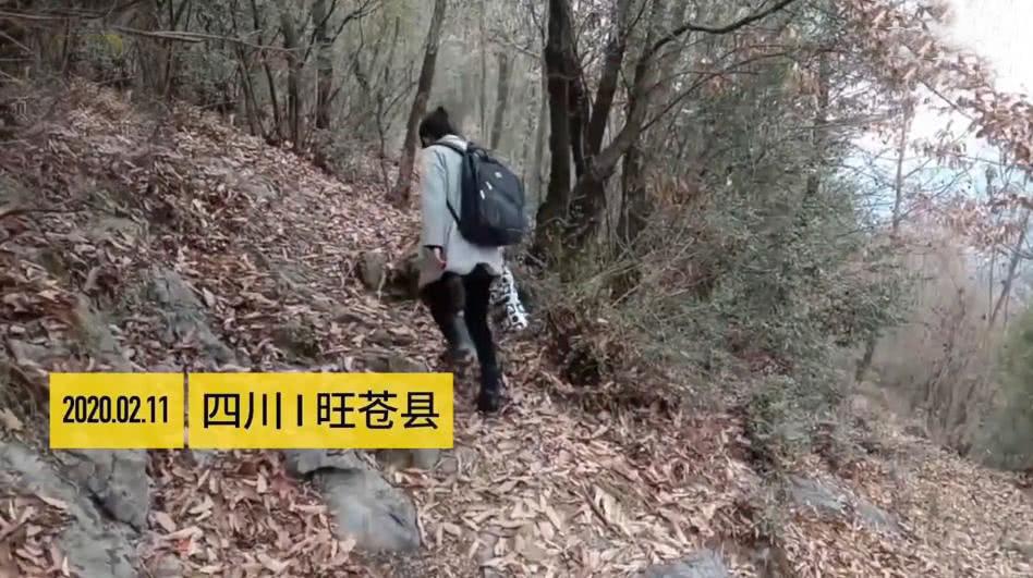 高一女生走2公里山路崖壁边学习,只因为家里没网