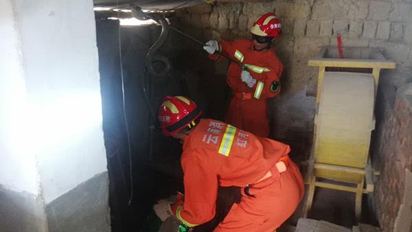 极具攻击性的眼镜王蛇进入村民家中,云南石屏消防成功捕捉