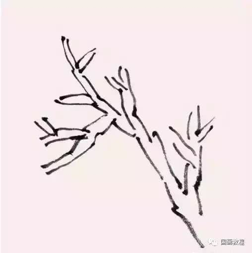 <b>12种树木点叶法,实用易学</b>