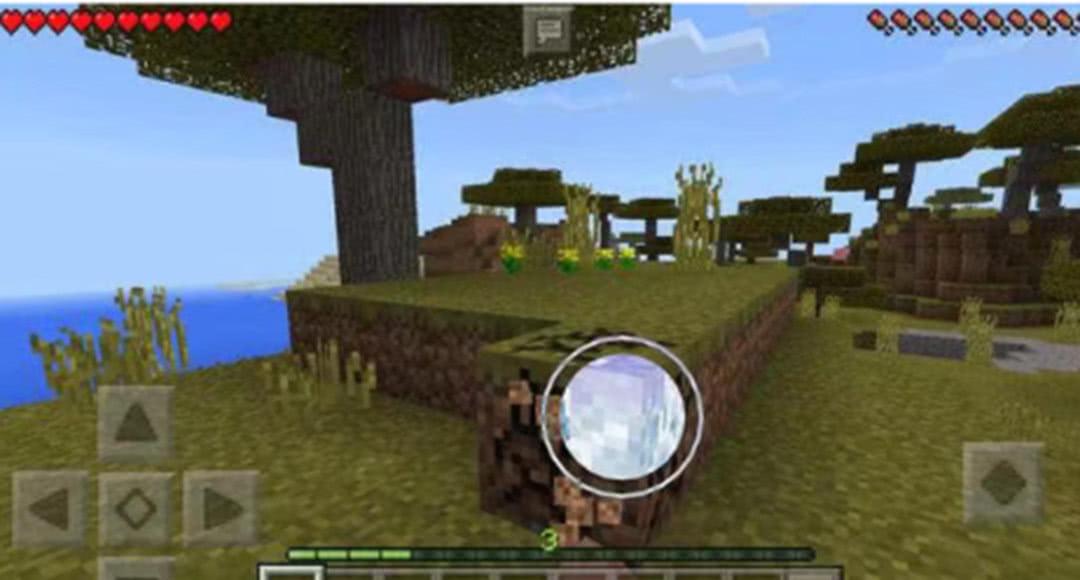 我的世界:游戏中最脆弱的实体方块是哪一个?这个一秒