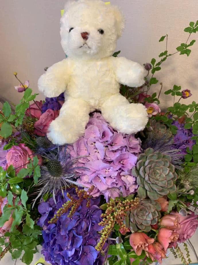 任达华遇袭后首发博!报平安称谢谢大家,还晒出女儿送的玩具小熊