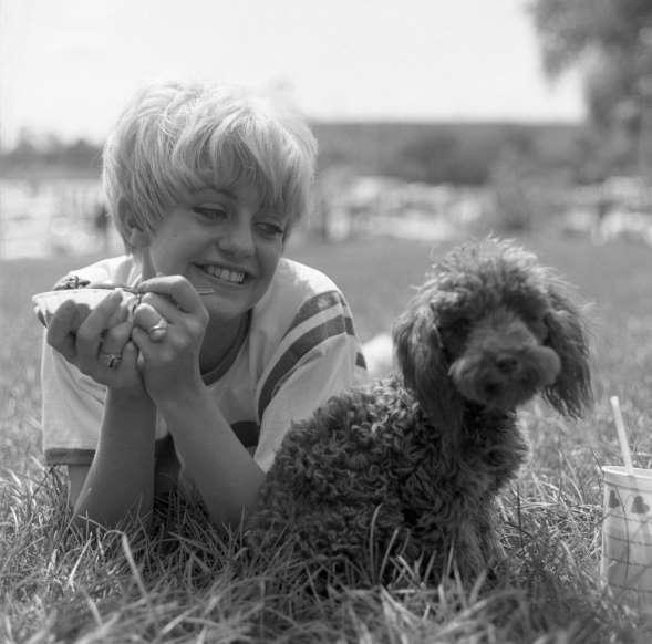 难得一见的老照片:60年代好莱坞名人的风光故事