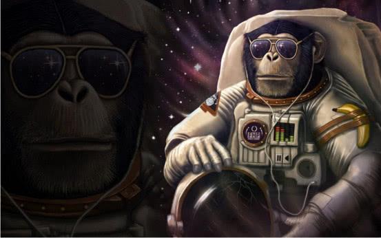 50年前它被送上太空,如今怎么样了?太空猴子的现状令人惊讶