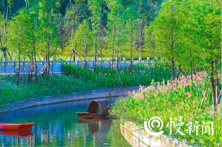 曾经的臭水沟如今的河滨公园,慢新闻记者带你打卡重庆跳磴河美景