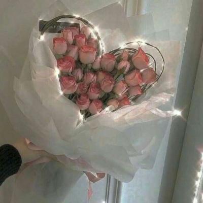 疫情影响下的情人节:百万只玫瑰被毁?