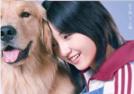 <b>徐峥vlog宣传电影宠爱突击演员钟汉良陈伟霆张子枫的房车拍摄</b>